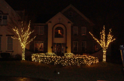 Professional Christmas Lights Installation and Holiday Decorating ...
